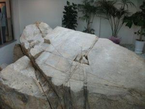ボンネコル記念館の岩